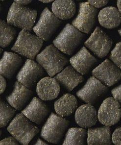 Pellets & Partikel
